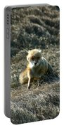 Fox In The Wind Portable Battery Charger