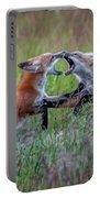 Fox Kitts Playing Portable Battery Charger