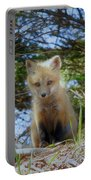 Fox Pup112 Portable Battery Charger