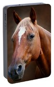 Fox - Quarter Horse Portable Battery Charger