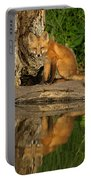 Fox Reflection Portable Battery Charger