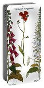 Foxglove And Hawkweed Portable Battery Charger