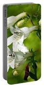 Foxglove Beardtongue - Penstemon Digitalis Portable Battery Charger