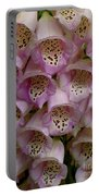Foxglove Upclose Portable Battery Charger