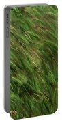 Foxtail Barley - Salisbury Potrero Portable Battery Charger