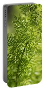 Foxtail Fern In Spring Portable Battery Charger