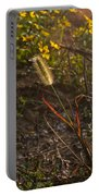 Foxtail Glowing In Sun Portable Battery Charger