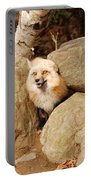 Foxy Portable Battery Charger
