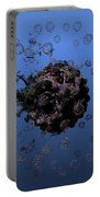 Fractal Planet Portable Battery Charger