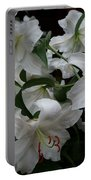 Fragrant Beauties Portable Battery Charger