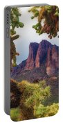 Framed By Cholla Portable Battery Charger
