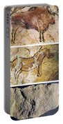 France And Spain: Cave Art Portable Battery Charger