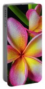 Frangipani After The Rain Portable Battery Charger