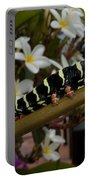 Frangipani Tree And Caterpillar Portable Battery Charger