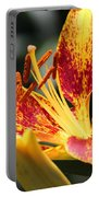 Frans Hals Daylily Hybrid Portable Battery Charger