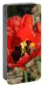 Frayed Tulip Portable Battery Charger