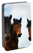 Free Wild Horses On The Mountain Portable Battery Charger