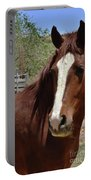 Freedom Horse Portable Battery Charger