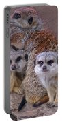 Freezing Meer Cats Portable Battery Charger