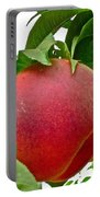 Fresh Peach Portable Battery Charger