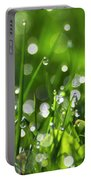 Fresh Spring Morning Dew Portable Battery Charger