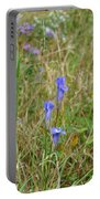 Fringed Gentian 2 Portable Battery Charger