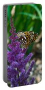 Fritllary Butterfly On Astilbe Portable Battery Charger
