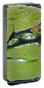 Frog Amongst The Lilypads Portable Battery Charger