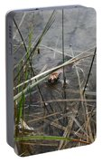 Frog Home Portable Battery Charger