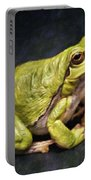 Frog - Id 16236-105016-7750 Portable Battery Charger