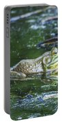 Frog In A Pond Portable Battery Charger