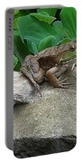 Frog On A Rock Portable Battery Charger