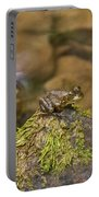 Froggy On A Hill Portable Battery Charger