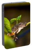 Frogs Life Portable Battery Charger