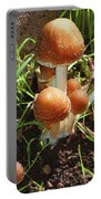 Front Pourch Mushroom Family Portable Battery Charger