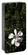 Frontyard Portable Battery Charger