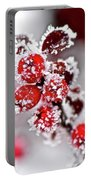 Frost Portable Battery Charger