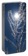 Frost Ice Crystals Portable Battery Charger