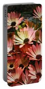 Frosted African Daisies Portable Battery Charger