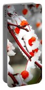 Frosted Berries Portable Battery Charger