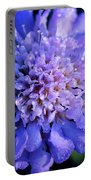 Frosted Blue Pincushion Flower Portable Battery Charger