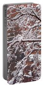 Frosted Branches Portable Battery Charger