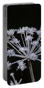 Frosted Hogweed Portable Battery Charger