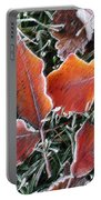 Frosted Leaves Portable Battery Charger