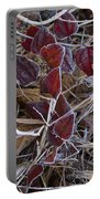 Frosted Red Green Briar Portable Battery Charger