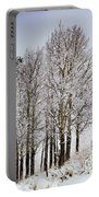 Frosty Aspen Trees Portable Battery Charger