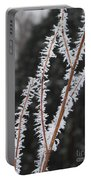 Frosty Branches Portable Battery Charger by Carol Groenen