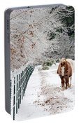 Frosty Mare Portable Battery Charger
