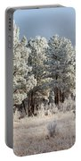 Frosty Pikes National Forest Portable Battery Charger