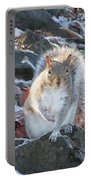 Frosty Squirrel Portable Battery Charger